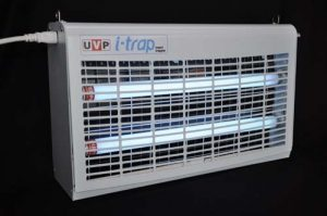 uv water filter, natural pest control, uv sterilization, healthcare assosciated infections, uv light for mold control, commercial pest control, outdoor bug zapper, uv disinfection UV light air purifier, ultraviolet light uses, commercial fly zapper, ultraviolet food sterilizer, uv light to kill germs, ultraviolet light uses killing bacteria